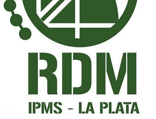 Premiação melhor modelo de aviação militar da Guerra das Malvinas – 33ª Convenção de Plastimodelismo do GPPSD